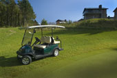 4-seater Club Car Villager 4 (4)