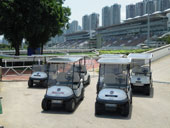 Shatin Race Club 4-seaters
